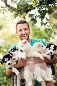 Cheerful Young Men Holding Five Lovely Husky Baby Puppies. Photo taken outdoor in the nature while the baby puppies having fun in the arms of their owner.